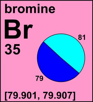 81 b r